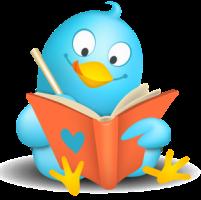 30f75-manuales_para_entender_twitter_y_usarlo_en_la_promocion_de_tu_negocio